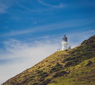 Fuller's GreatSights Cape Reinga Wanderer Day Tour