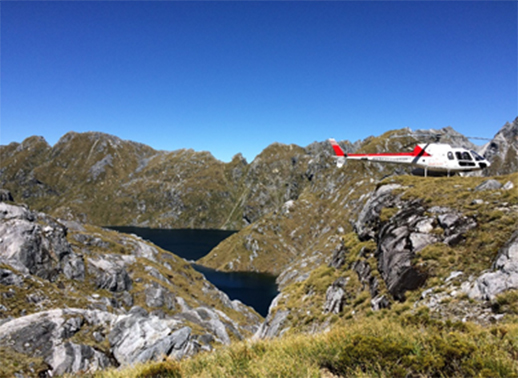 Sights of Southern Fiordland