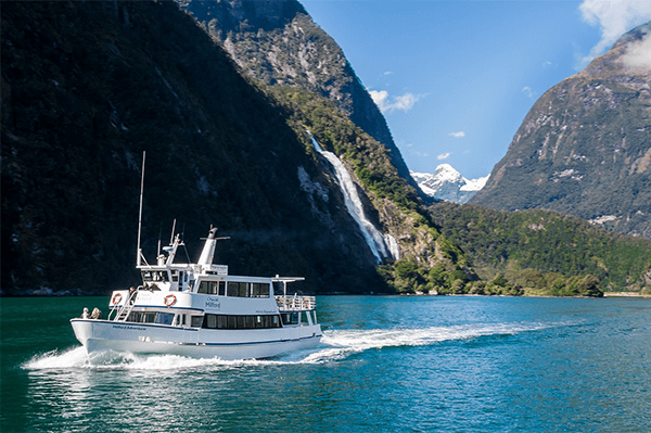 Private Cruise Milford Sound
