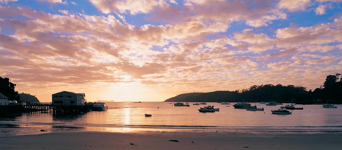 Fiordland Lodge & Stewart Island Escape