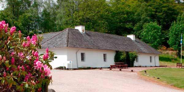Highland Village Experience