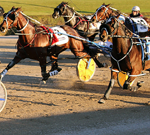Horse and Harness Racing