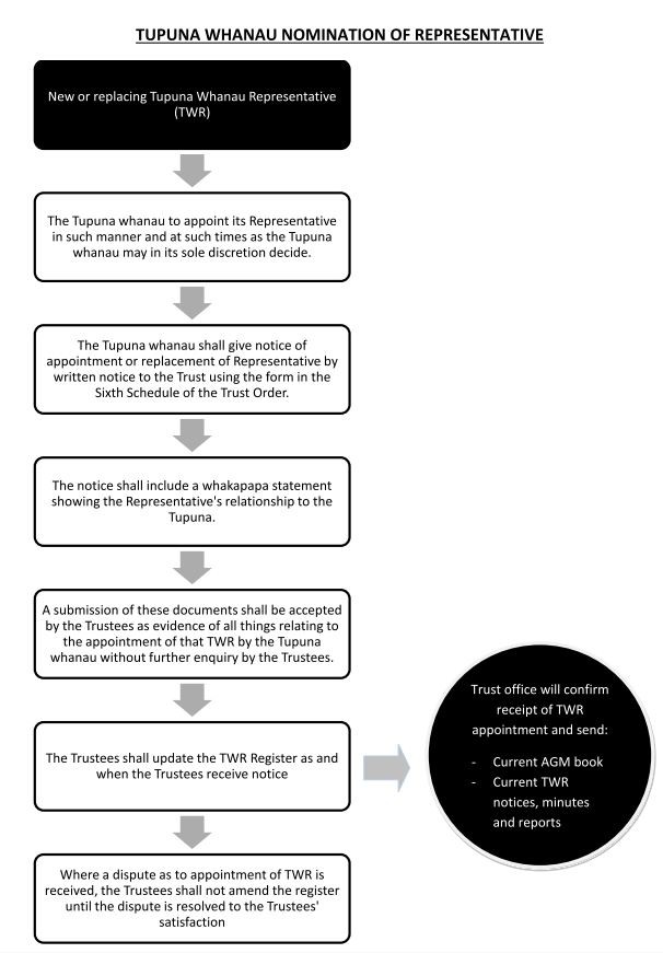 How to become a Tupuna Whanau Representative (flow chart)