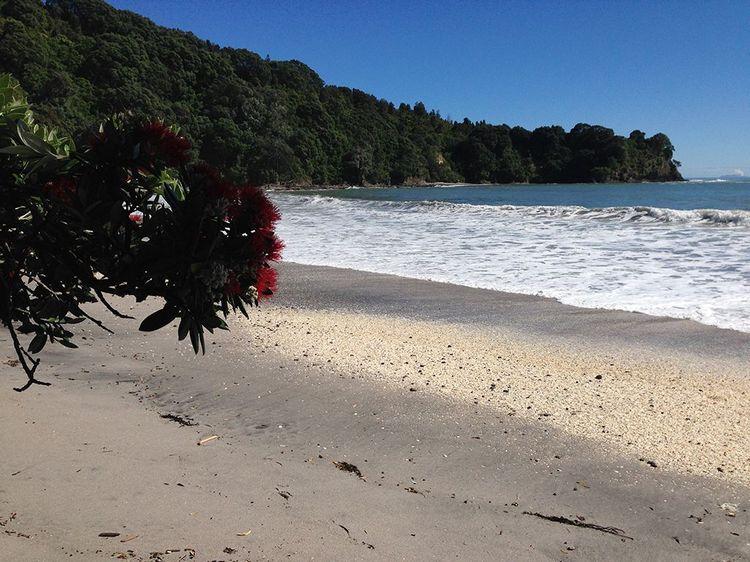 Otarawairere Beach